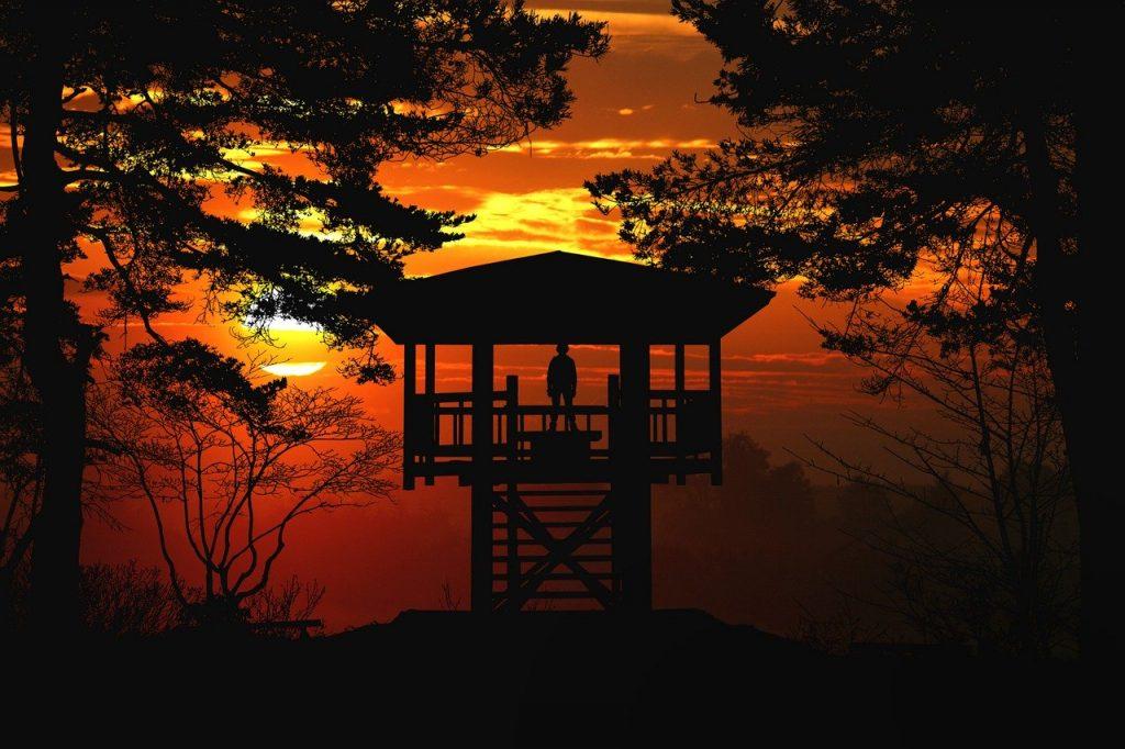 sunset, dusk, silhouette
